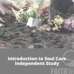 Introduction to Soul Care Independent Study Now Available